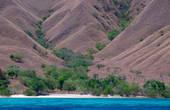 L'île de Komodo en Indonésie