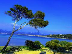 La Côte d'Azur et ses 12 monuments