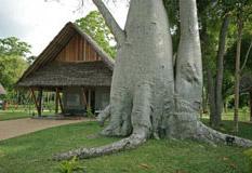 Tourisme écologique : découvrez l'Eden Lodge à Madagascar