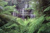 Tourisme vert: vacances nature en Tasmanie