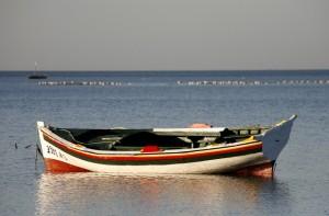 Vacances à Djerba, l'île du bonheur