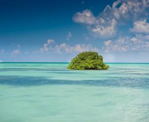 République dominicaine, une île paradisiaque