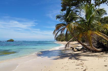 Punta Cana, la côte des cocotiers