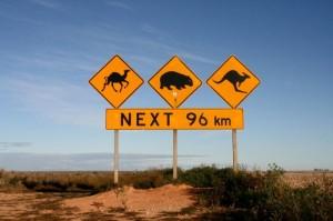 Escapade au pays des kangourous!