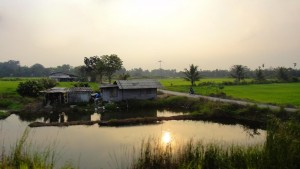Un séjour paradisiaque en Thaïlande