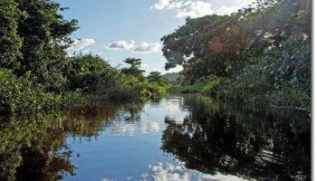 Un voyage en Guyane : les lieux incontournables à découvrir