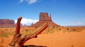 L'autorisation ESTA permet des voyages de dernière minute aux USA