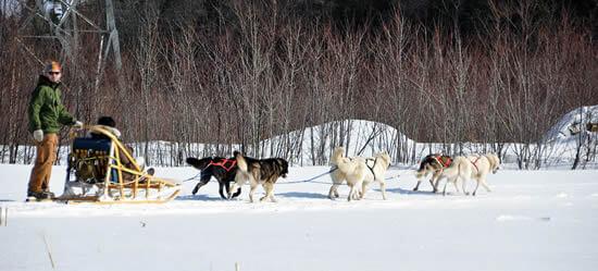 Vacances en montagne, les activités sportives à faire en hiver