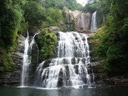Voyage nature au Costa Rica : Nos idées de circuits !