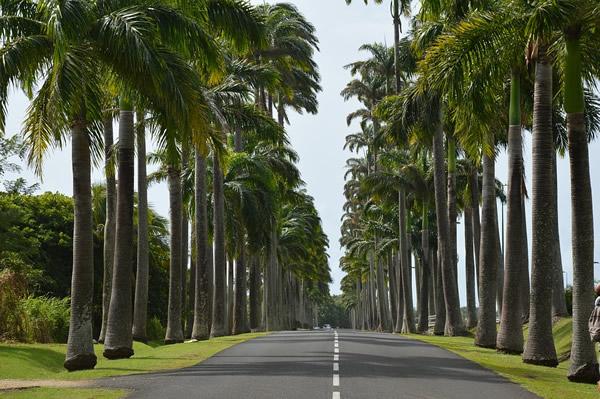 » Road trip en Guadeloupe «