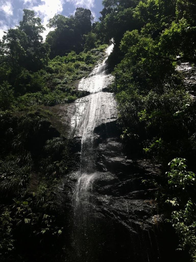 Attachante et charmeuse, la Martinique est le cadre idéal pour vos prochaines vacances en famille ou entre amis.
