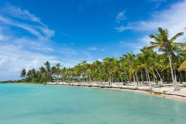 Pourquoi choisir la Guadeloupe cet hiver ?