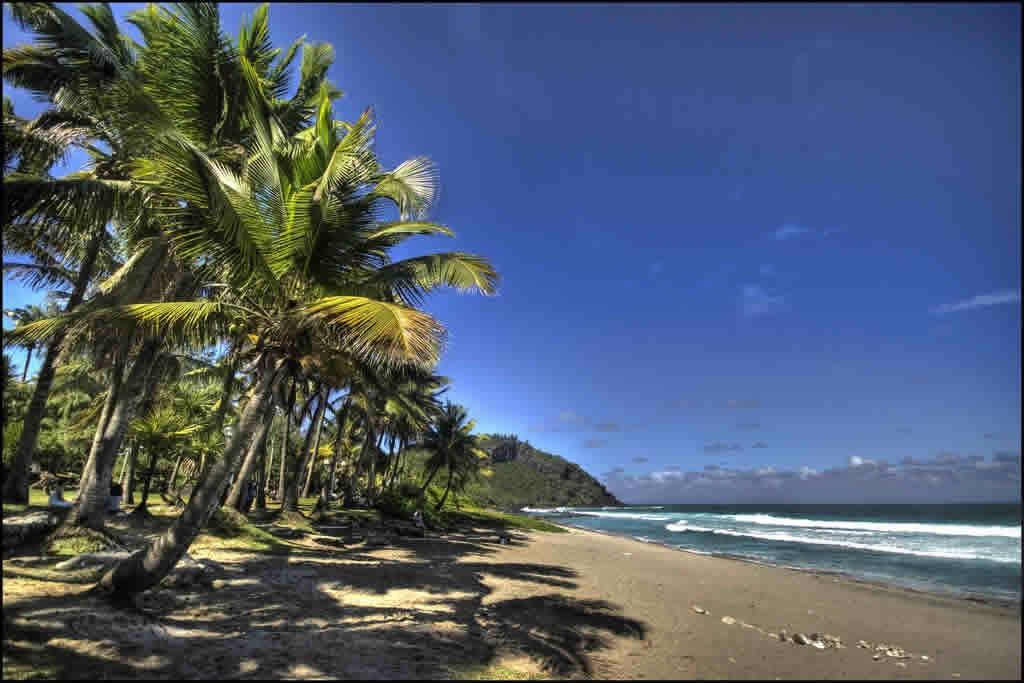 Que faire lors de vos vacances à la Réunion?