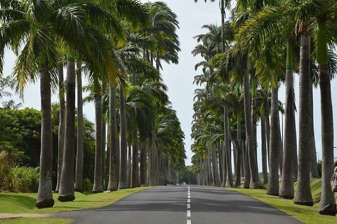 A la découverte de la Guadeloupe en voiture de location