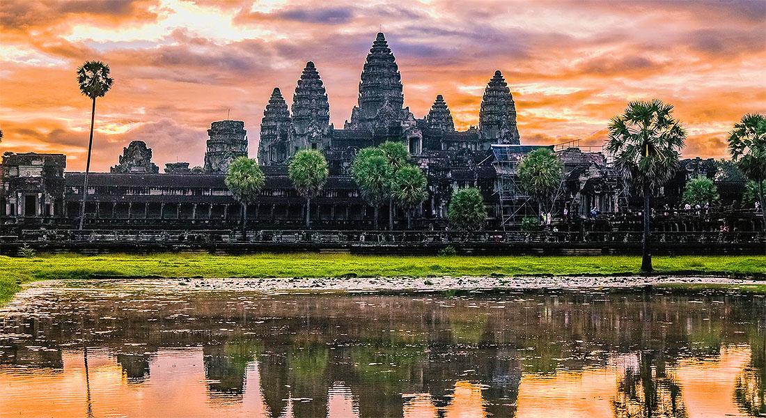 Le Cambodge: Partir à la rencontre d'une faune et flore hors du commun!
